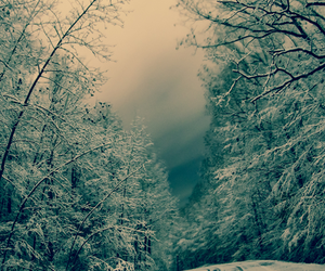 landscape, winter, and lost image