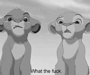 confused, lion king, and wtf image