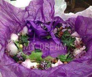 ollg, justin bieber, and Dream image