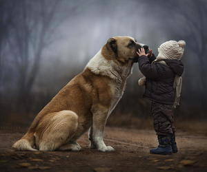 dog, child, and friends image