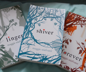 book, forever, and shiver image