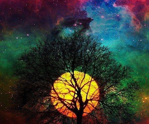 tree, moon, and colors image