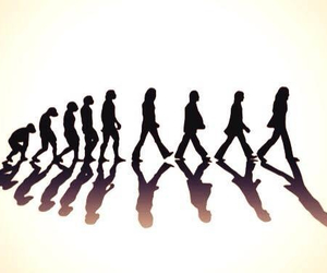 the beatles, evolution, and beatles image