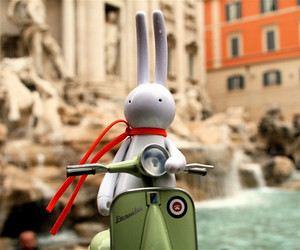 rabbit and rome image