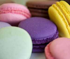 colourful, dessert, and nice image