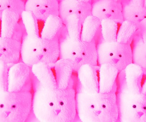 rabbit, pink, and bunny image