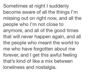 quotes, night, and loneliness image