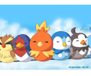 Piplup, pokemon, and swallow image