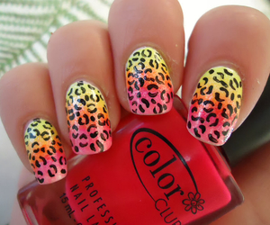 nails, yellow, and leopard image