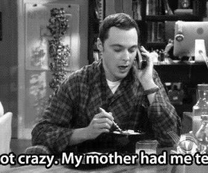 crazy, sheldon, and funny image