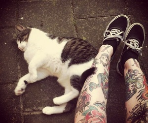 tattoo, cat, and vans image