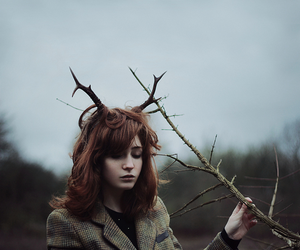 photography, deer, and fantasy image