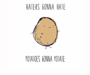 potato, cute, and haters image