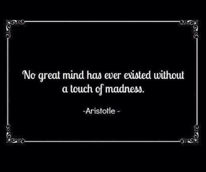 quote, madness, and aristotle image