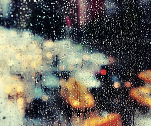 rain, city, and lights image