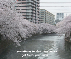 grunge, pale, and quotes image