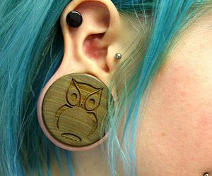 Plugs, piercing, and owl image