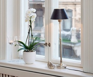 home decoration, window, and white image