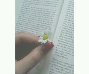 book, white, and daisy image