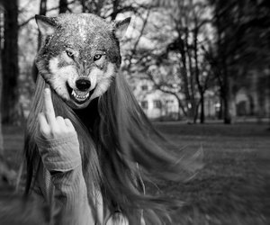 fuck you and wolf image