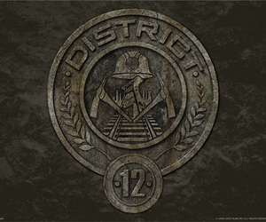 district 12, the hunger games, and district image
