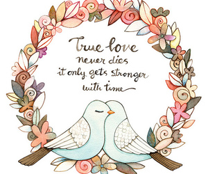 love, bird, and true love image