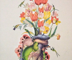 bird, flowers, and heart image