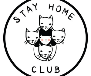 cat, club, and home image