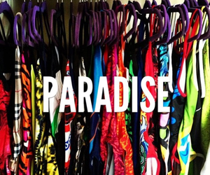 swimming, paradise, and swimmer image