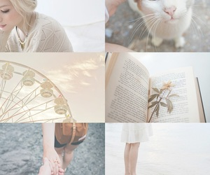 cat and Collage image