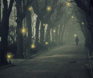 light, dark, and tree image