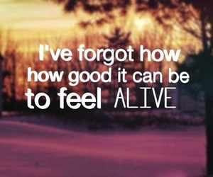 alive, quote, and life image