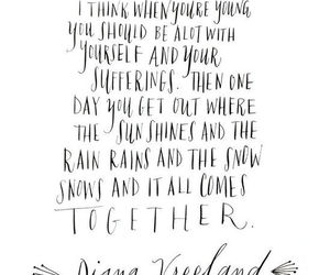 diana vreeland, quote, and true image
