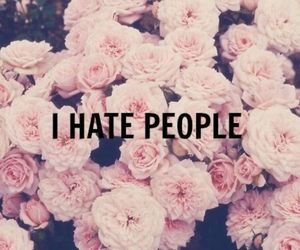 flowers and hate image