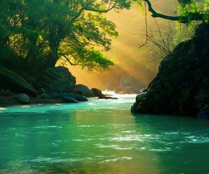 nature, water, and landscape image