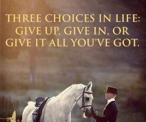 horse, quote, and choices image