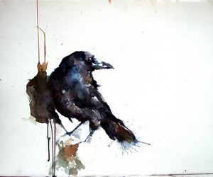 bird and painting image