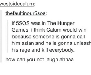 5sos, hunger games, and 5 seconds of summer image