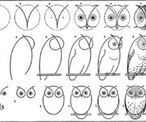 owl, draw, and drawing image