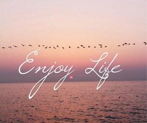 life, enjoy, and birds image