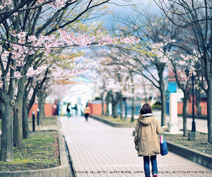 girl, japan, and flowers image