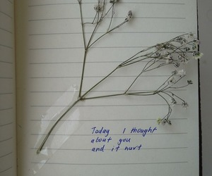 flowers, hurt, and quote image