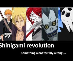 shinigami, bleach, and death note image