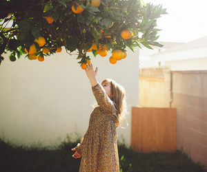 orange, tree, and child image