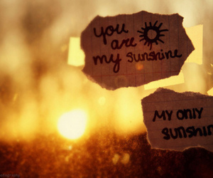 sunshine, quote, and sun image