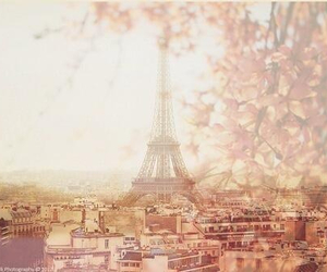 paris, beauty, and cute image