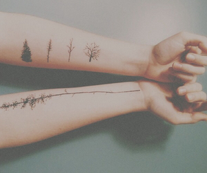 arm, hands, and trees image