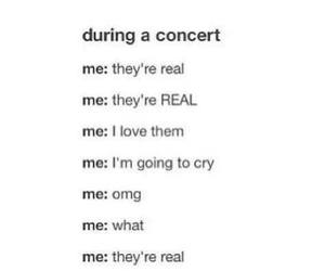 concert, band, and one direction image