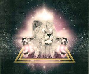lion and triangle image