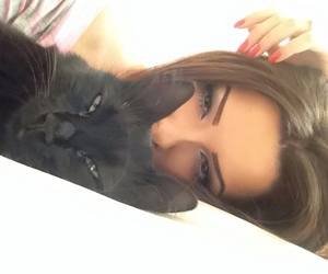 cat, togheter, and beautifuls image